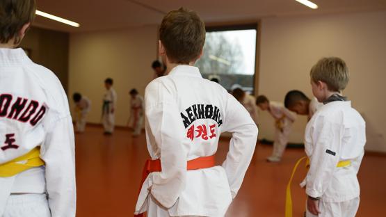 Taekwondo_EnfantsDos_9a13ans